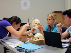 Students in one of Dale Hutchinson's courses on physical anthropology.