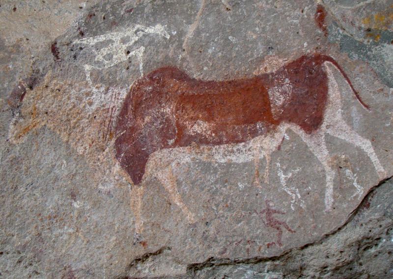 Silvia Tomaskova spent 2010 to 2011 in South African studying prehistoric rock art. (photo courtesy of Silvia Tomaskova)