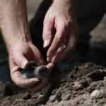 Excavation-2resizedforweb-300x200