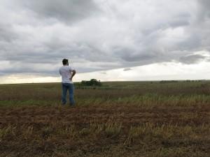Brazil Soy Farm_Ofstehage
