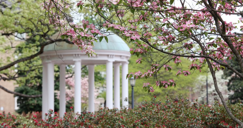 Spring views at the University of North Carolina at Chapel Hill.